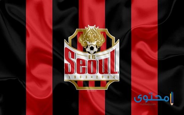 معاني شعارات الأندية المشاركة في دوري أبطال آسيا 2021 5