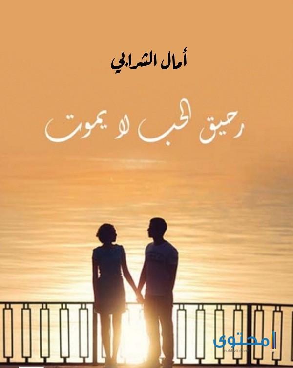 روايات رومانسية كوميدية - موقع محتوى