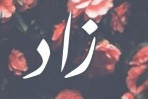 معنى اسم زاد بالتفصيل