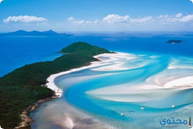 شاطئ وايت هافن, أستراليا