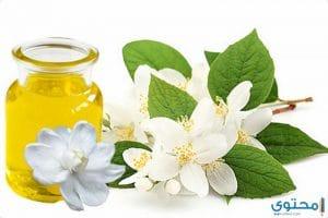 فوائد زهرة الياسمين للصحة والجمال