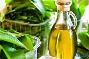 فوائد زيت المرمرية للبشرة والصحة