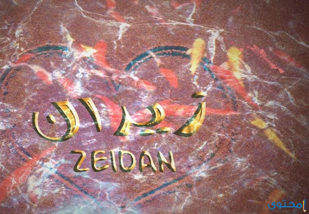 معنى اسم زيدان