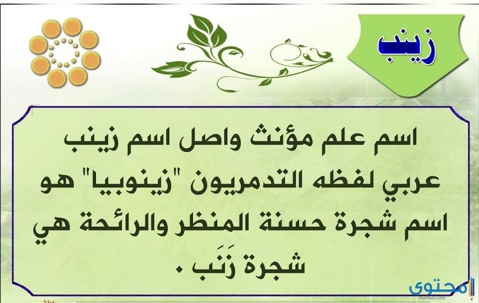 معنى اسم زينب وصفات من تحمله موقع محتوى