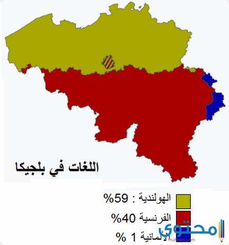 سكان بلجيكا
