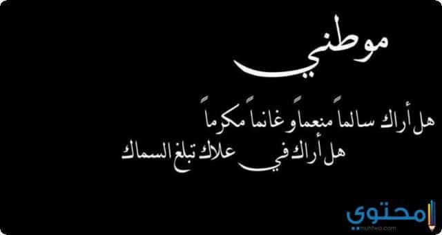 سوريا 2
