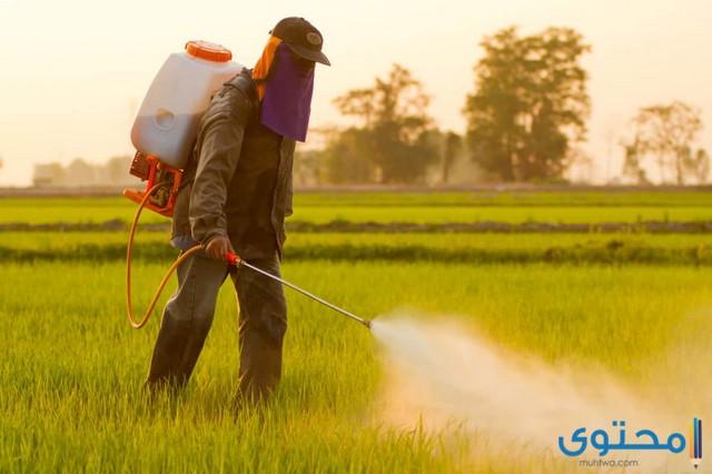 شركات مبيدات زراعية