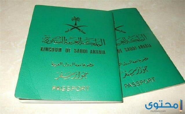 شروط الحصول على الجنسية السعودية 1442 موقع محتوى