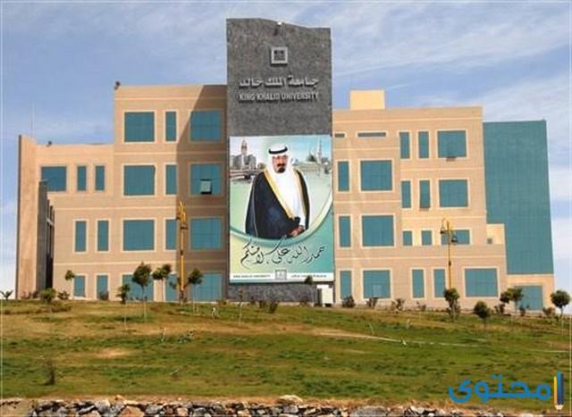 المنح الداخلية للطلبة الغير السعوديين