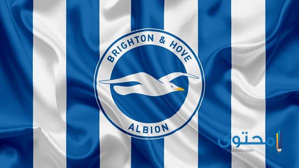 شعار برايتون أند هوف ألبيون