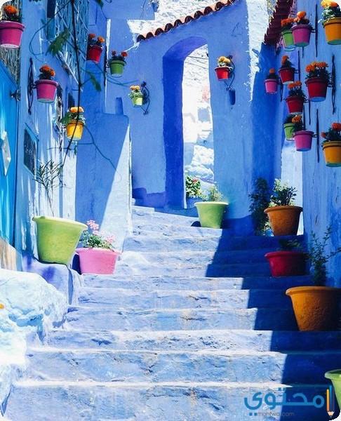 مدينة شفشاون المدينة الزرقاء