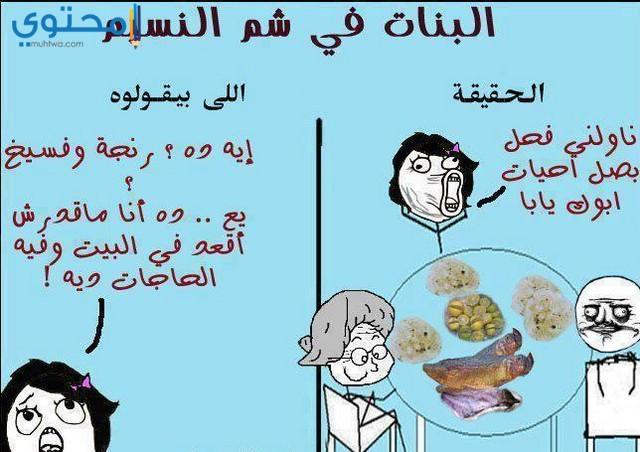 كاريكتير شم النسيم كوميدي
