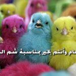 اجازة شم النسيم 2018 في مصر