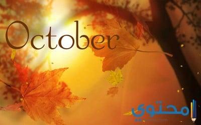 صفات مواليد شهر أكتوبر 10 العقرب والميزان