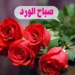 صور كلمات صباح سعيد 2019