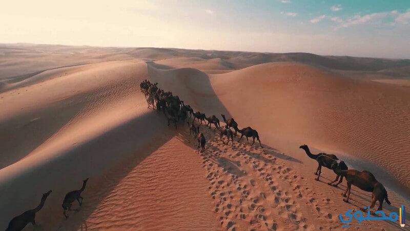 المعالم السياحية الحديثة في السعودية
