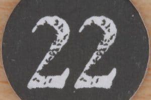 صفات وخصائص مسار الحياة رقم 22