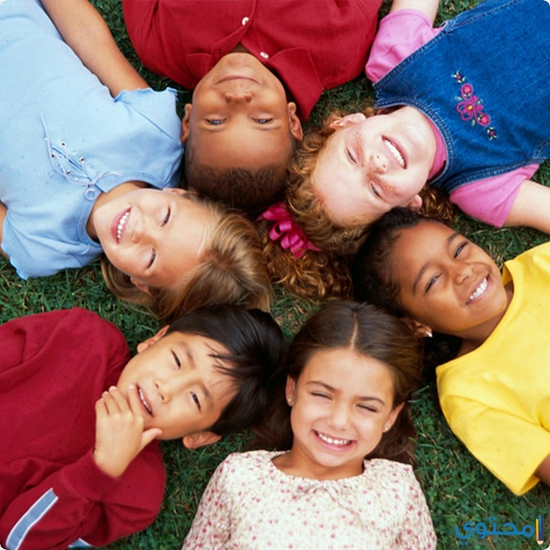 أهمية تناول صفار البيض للأطفال والكبار - موقع محتوى