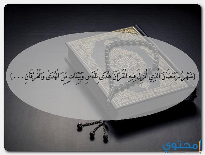 القرآن في صلاة التراويح
