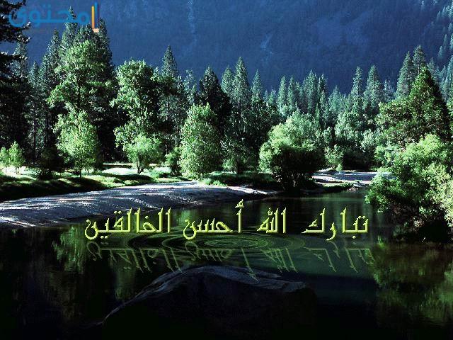 احلى الصور والخلفيات الاسلامية
