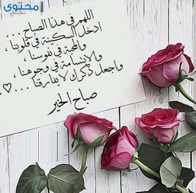 صباح الخير دعاء بالصور اجمل الادعية الصباحية صباح الورد