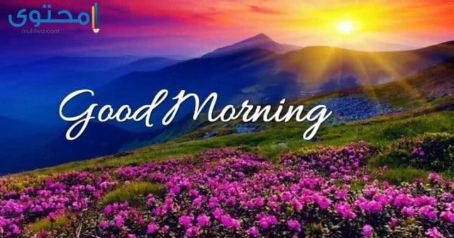 اجمل صور صباح الخير