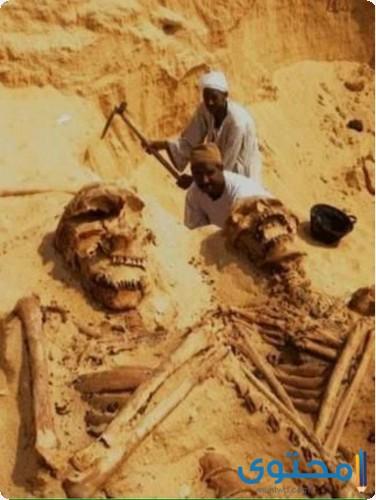 صور أثار وجثث قوم عاد عمالقة قوم عاد
