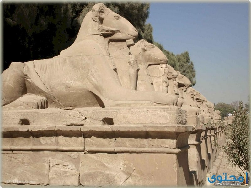 معبد الكرنك وطريق الكباش