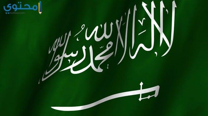 صور ورمزيات علم السعودية