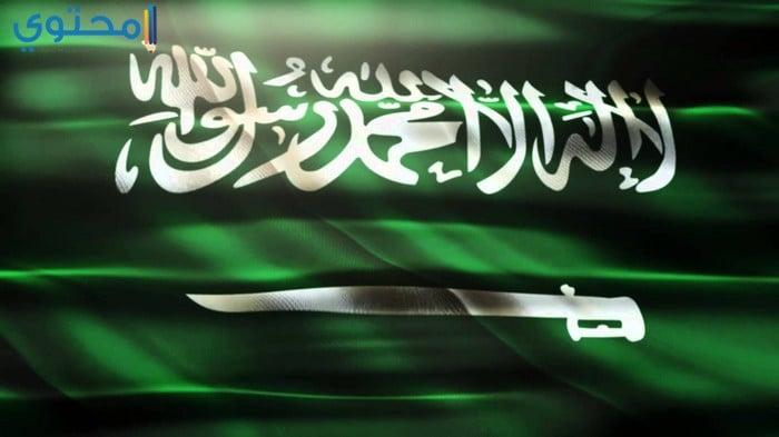 رمزيات علم السعودية