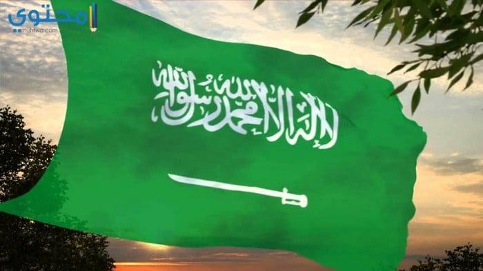خلفيات علم السعوديةجديدة