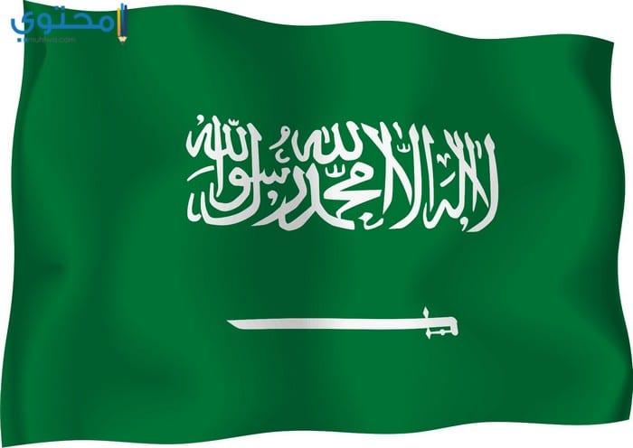 خلفيات علم السعودية حديثة