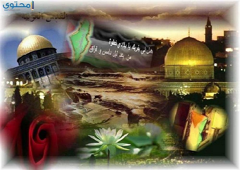 صور القدس لنا