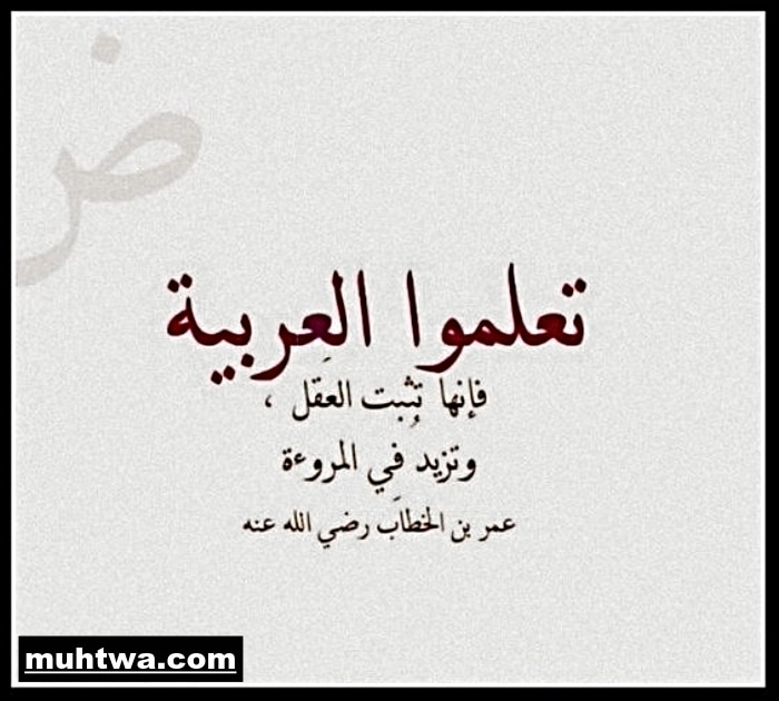 موضوع تعبير عن اللغة العربية 2021 موقع محتوى