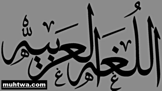 تعبير عن اللغة العربية بالعناصر الرئيسية