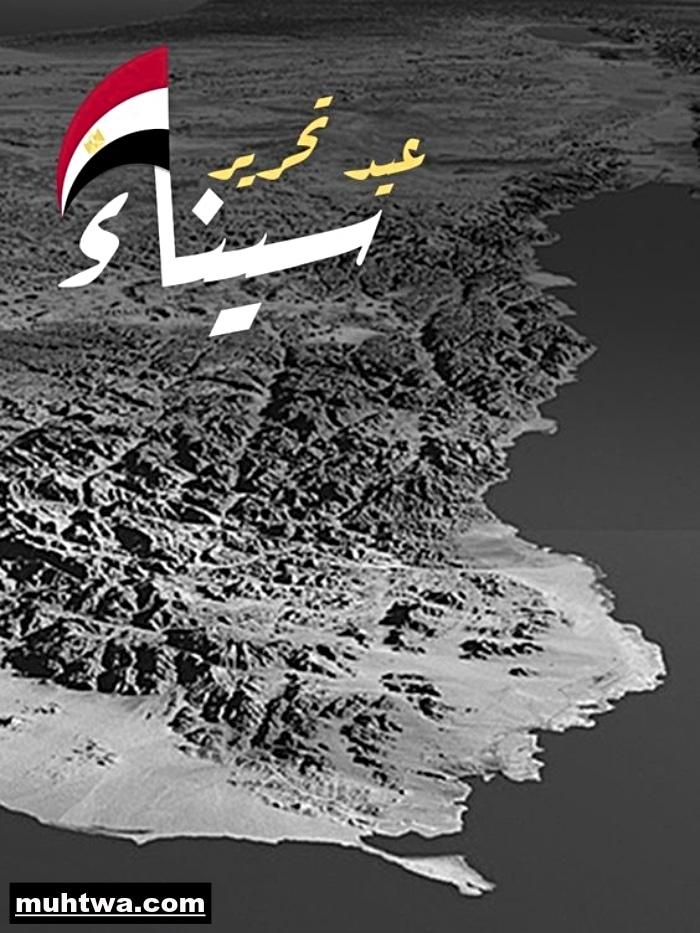 صور تحرير سيناء