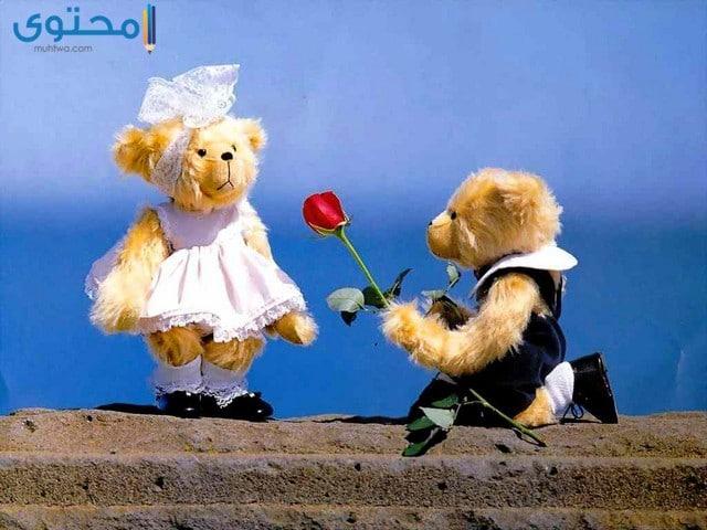اجمل صور الحب والرومانسيه