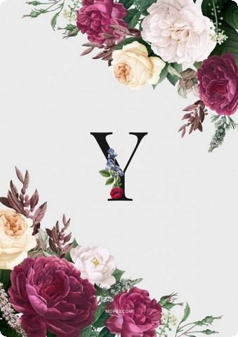 صور حرف Y