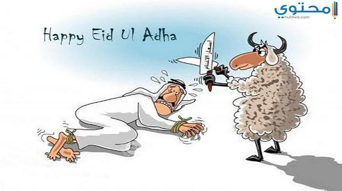 صور ورمزيات خروف العيد جديدة
