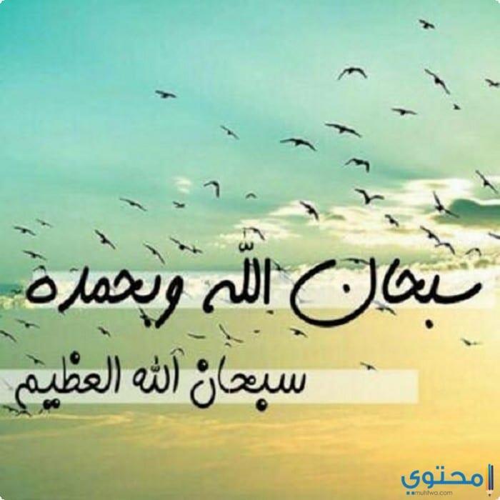اجمل صور خلفيات واتس اب اسلامية 2020 موقع محتوى