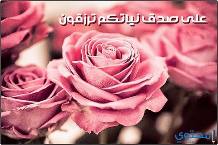 اجمل صور خلفيات واتس اب اسلامية 2021 - موقع محتوى