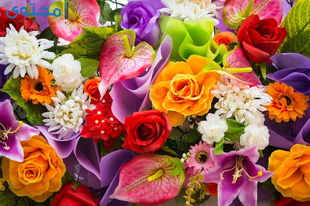اجمل الورود والزهور في العالم بالصور