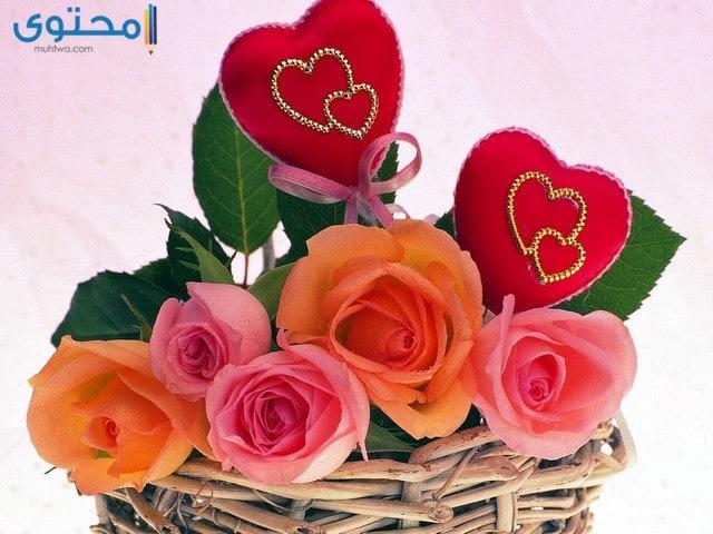 زهور رومانسية