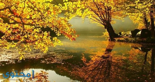 اجمل صور الطبيعة