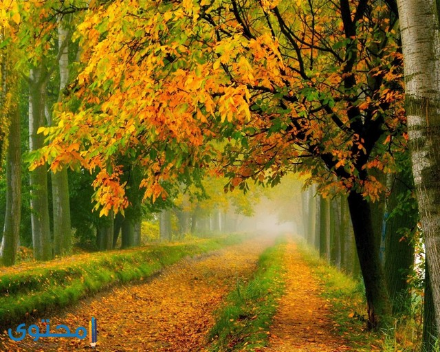 اجمل صور الطبيعة في العالم
