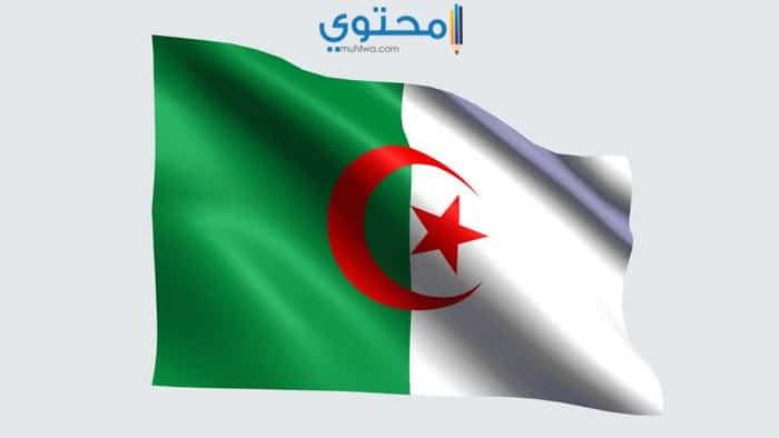 أروع صور لعلم الجزائر