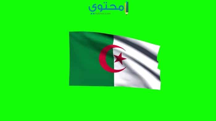 أجمل الصور لعلم الجزائر