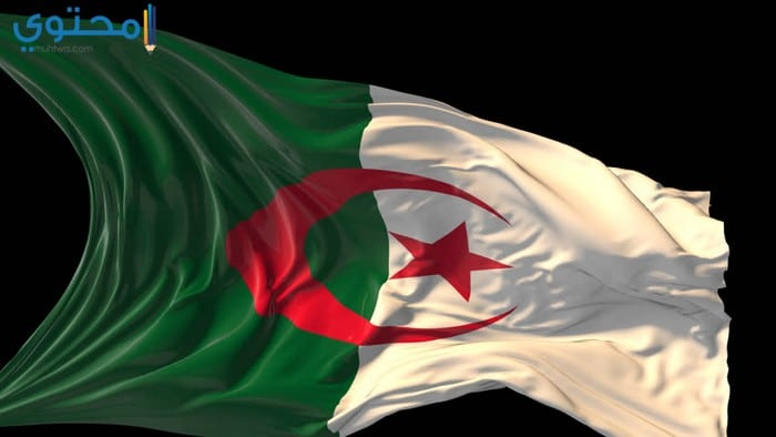 صور علم الجزائر للفيس بوك