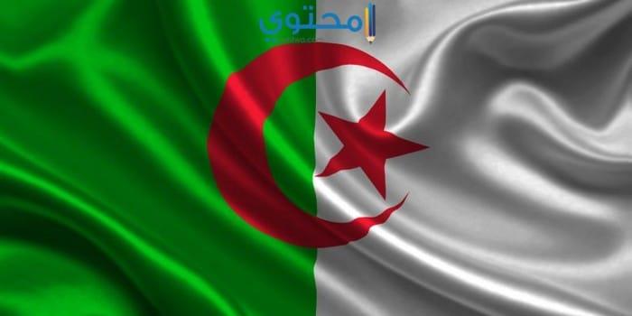 صور علم الجزائر حديثة