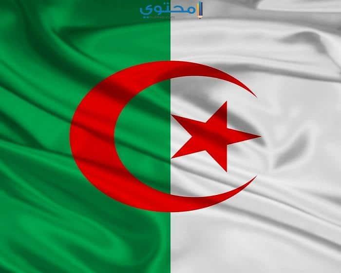 صور وتصميمات علم الجزائر
